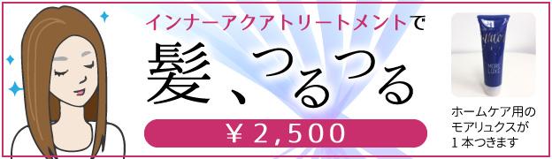 インナーアクアトリートメントで髪、つるつる ¥2,500 ホームケア用のモアリュクスが1本つきます